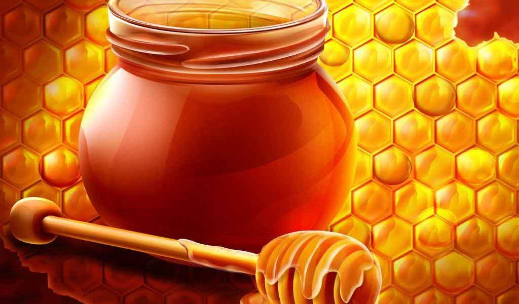 الجنسنج-و-العسل