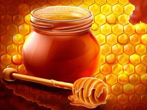 فائدة تناول الجنسنج مع العسل للعلاج أمراض الذكورة و العقم لدى السيدات