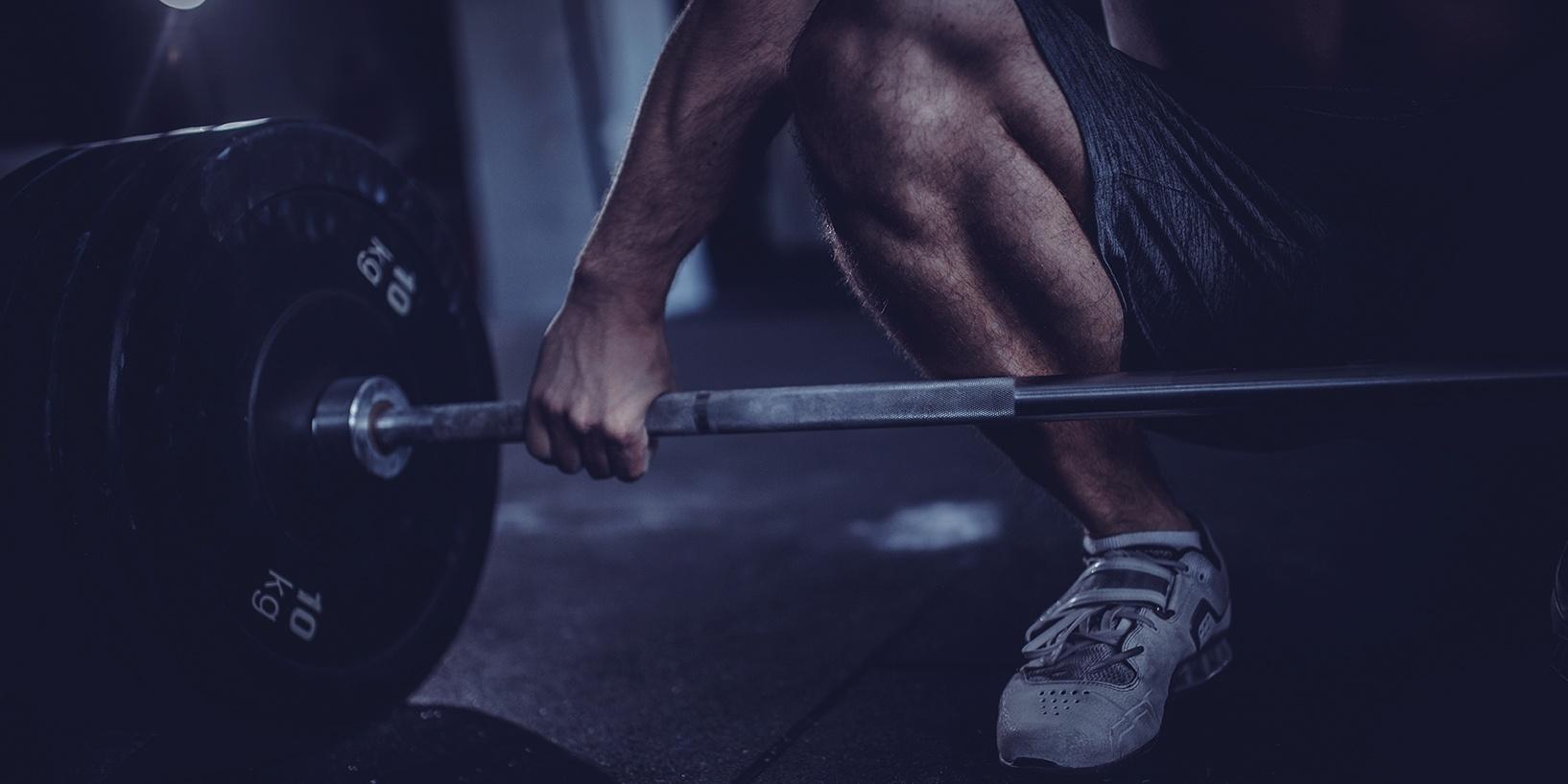 جنسنج الصحراء و الكتلة العضلية
